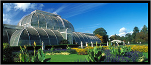Royal Botanical Gardens Kew
